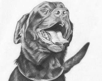 Custom Pet Portrait in Graphite - 12x12