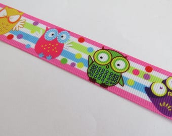 Pretty Ribbon rose with green, yellow and purple owls pattern