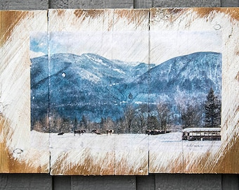 Cows in the Snow Wall Hanging, Fine Art Photograph Manually Transferred to Reclaimed Wood, Ready to Hang in Your Home