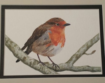 Original Acrylic framed artwork Robin on branch 5 x 7