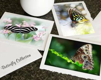Butterfly CARD Collection, Flower, Wildlife, Christmas Photo greeting cards Blank Notecards Set Choose any 3 pictures in my shop Gift mom