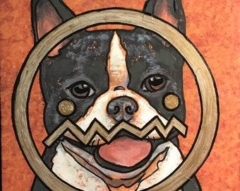 Gold ME on Boston Terrier (2018)