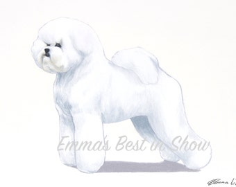 Bichon Frisé Dog - Archival Fine Art Print - AKC Best in Show Champion - Breed Standard - Non-Sporting Group - Original Art Print