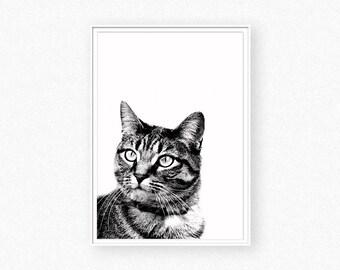 Cat print, cat wall art, black and white animal photography, animal print, nursery decor, cat photography