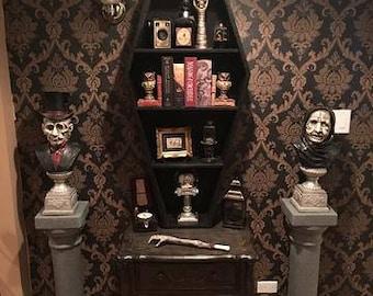 Coffin Bookcase