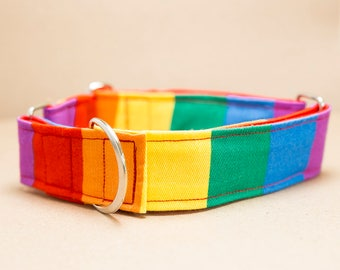 "Greyhound - Rainbow Stripe 2"" Martingale Collar"