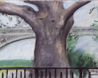 Inwood Hill Park tree pastel sketch - London plane tree and bridge and Hudson River - 8 x 10 print