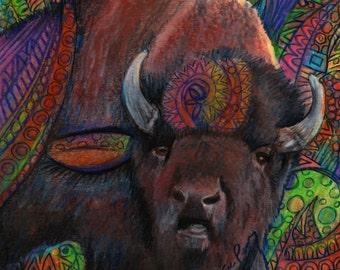 dessin couleur crayon buffalo bison zentangle conception d'art original