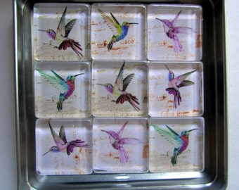 Hummingbird Magnets, Hummingbird Fridge Magnets, Hummingbird Decor, Hummingbird Refrigerator Magnets, Frdige Magnet Set with Storage Tin