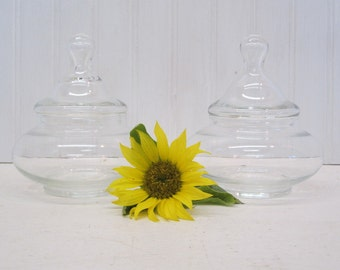 Pair of Short Round Clear Glass Apothecary Candy Jars Terrarium