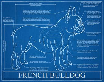 Personalized dog blueprints custom pet by wetnosewigglybutts french bulldog blueprint elevation french bulldog art french bulldog wall art french bulldog gift french bulldog print malvernweather Gallery
