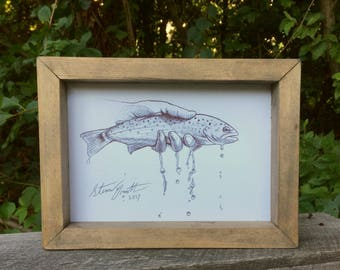 Brown Trout pen drawing (FRAMED)