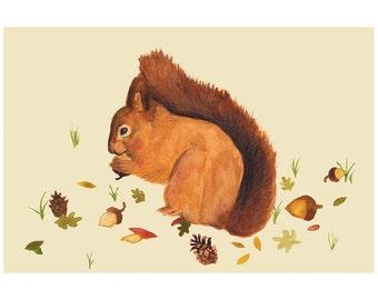 Squirrel Illustration - Archival Print A4 - 297x210 - Nursery, Children