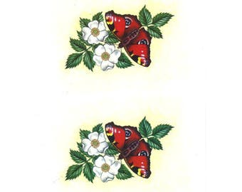 Butterfly red DC096