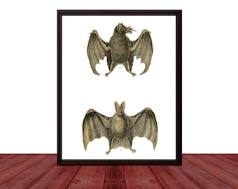 Bat Art Printable Digital Download / Bats Art Print / Witchy Gothic Home Decor / Bohemian Housewarming Gift / Oddities and Curiosities