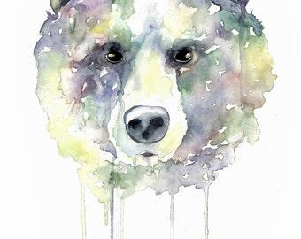 Watercolour Bear Print