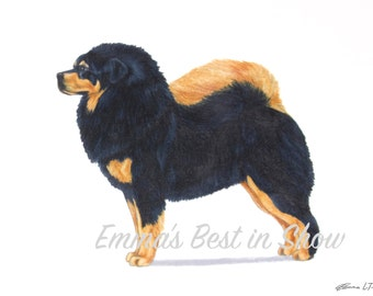 Tibetan Mastiff Dog - Archival Fine Art Print - AKC Best in Show Champion - Breed Standard - Working Group - Original Art Print