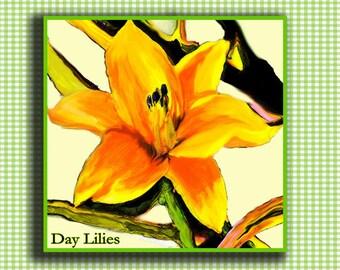 Daylily Note Cards