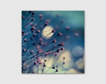Soft Nature Photo Wrapped Canvas Wall Art, Blue and White Bokeh Pink Delicate Dried Plants, Relaxing Tranquil Botanical Nature Canvas Print