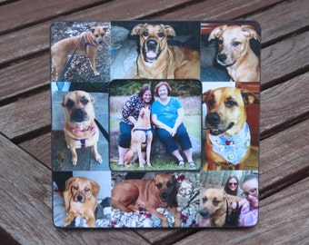 """Pet Collage Picture Frame, Personalized Pet Memorial Picture Frame, Family Dog Frame, Custom Cat Frame, Family Pet Picture Frame 8"""" x 8"""""""