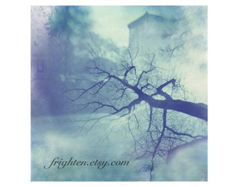 Ice Blue Photography Print, Surreal Photography, Holga Double Exposure in Prospect Park Brooklyn, Nature Art Print, frighten