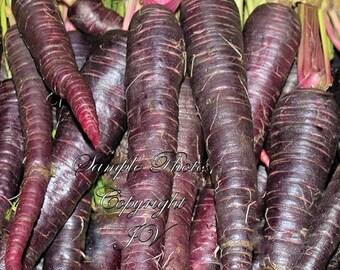 Purple HAZE Carrot Seeds NON Gmo 100 Seeds, gourmet heirloom vegetable, natural, Farmers market best seller, Home Garden Favorite