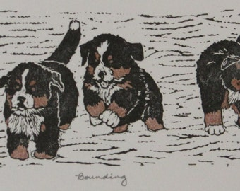 """Bernese Mountain Dog puppies hand-colored block print, limited edition - """"Bounding"""""""