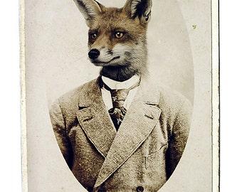 Fox Portrait Art Print Vintage Woodland Animal