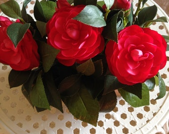 Red Camelia in Wooden Box