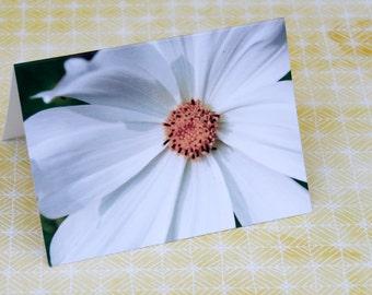 White Flower Notecard