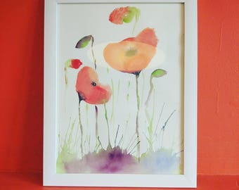 Poppies, aquarelle painting, framed