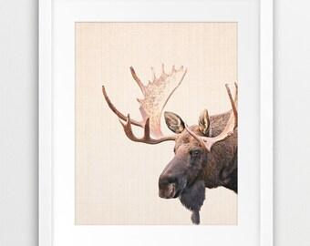 Moose Print, Woodlands Animal Wall Art, Moose Photo, Nursery Animal Decor, Forest Animal Print, Antlers, Kids Room Decor, Printable Art