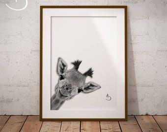 CUTE PEEKABOO GIRAFFE Drawing download, Giraffe decor, Peekaboo Giraffe Print, Printable Giraffe Poster, Printable Decor, Peekaboo Animals