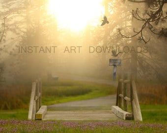 Digital Backdrop, Enchanted Forest, Photography Background, Forest Backdrop, Digital Download, Printable Background, Stock Photos, Bridge