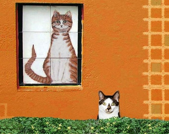 Blank Note Cards, Cat Tile, Set of 5, Funny Cards, Photo Notecards, Note Card Stationery, Cute Cards, Deborah Julian