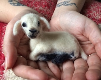 Beautiful hand felted baby lamb