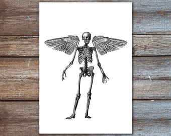 wall art skeleton with wings - angel wings wall decor - HUMAN SKELETON art