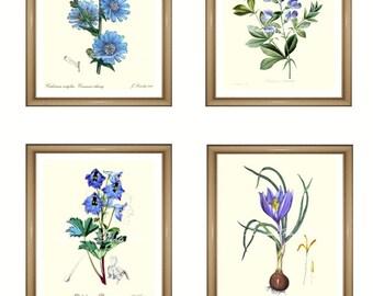 "Blue flowers print Set. Botanical Print Set. ANY 4 blue flower prints. Blue wall art. Flower print set. 5x7""  8x10""  11x14"""