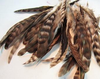 Grau Chinchilla Schlappen Federn 6 bis 8 Zoll Handwerk Federn fliegen binden Federn