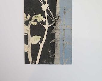 Small Original botanical monoprint Stef Mitchell Wild Flowers leaves stems Dusky blue Soft grey Black