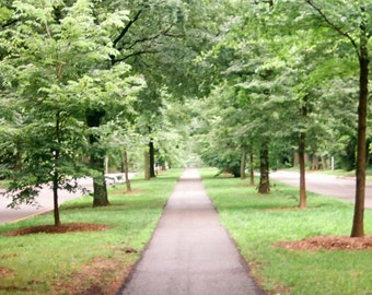 Path down Eastern Parkway