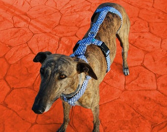 Greyhound harness/ dog harness/ galgos harnesses/ safety harness/ anti-escape system/ picnic style/ Vichy fabric/ design