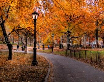 Central Park in Autumn,  8x10 Fine Art Photo Print