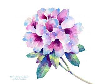Watercolour Flower Painting RHODODENDRON SAPPHO Handmade Wall Art Flower Print, Original Wall Art, Watercolour Flower Art, Birthday Gift