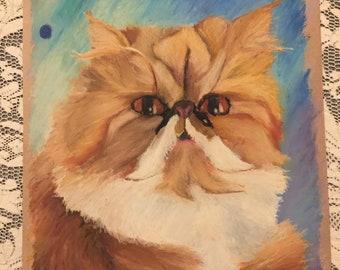 Persian Cat (Example)