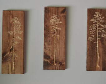 3 individual Carved tree wood wall hanging art
