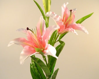 """Casablanca Lily in Pink - 42"""" Tall"""