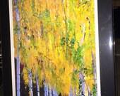 Fall Birch- Matted Print 11 x 14