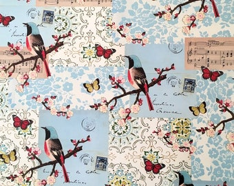 Vintage Bird & Butterfly Wrapping Paper by Cavallini to Frame, Wrap, Book Binding, Decoupage, Collage, Scrapbooking, Paper Arts PSS 3501