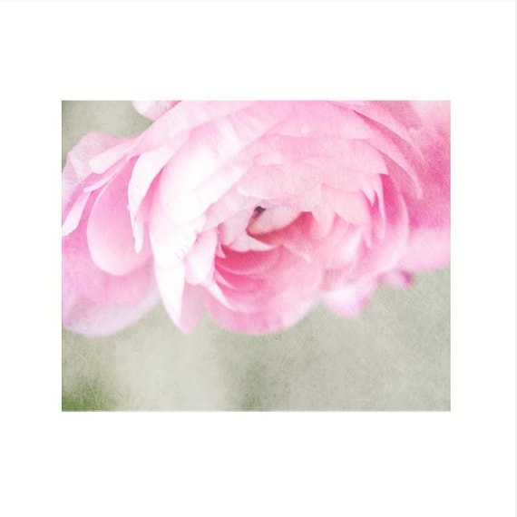 New! Photography Print, Wall Art, Nursery, Pink, Valentine, Flowers, Nature, 10 wide x 8 high and larger Fine Art print, Shabby Chic